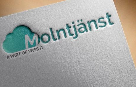 molntjanst-logo-mockup på Growon Sweden webbsida